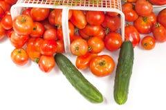 Cesta de Tomatoe con eneldo y pepinos Fotos de archivo
