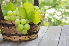 Cesta de uvas verdes frescas em uma superfície de madeira rústica Imagem de Stock