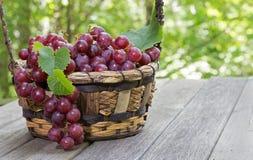 Cesta de uvas vermelhas frescas em uma tabela de madeira Imagens de Stock Royalty Free