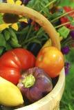 Cesta de vegetais do jardim fotografia de stock royalty free