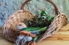 Cesta de verduras frescas imágenes de archivo libres de regalías