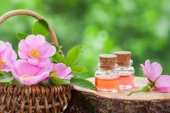 Cesta de vime com as flores do quadril cor-de-rosa e as garrafas do óleo Fotografia de Stock Royalty Free