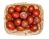Cesta de vime com kumakos dos tomates de cereja os mini cortados em meio e em inteiro Com gotas da ?gua fotos de stock royalty free