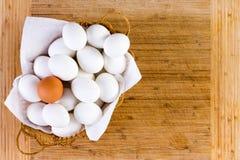 Cesta de vime completamente de grandes ovos fotos de stock royalty free