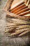 A cesta de vime cortou as orelhas do centeio do pão no fundo de serapilheira Imagens de Stock