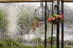 Cesta decorativa con las manzanas y el tangerinesOn artificiales el fondo de un vidrio con una fuente de agua Imagen de archivo libre de regalías