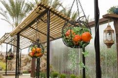 Cesta decorativa con las manzanas y las mandarinas artificiales Imagenes de archivo