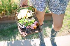 Cesta del jardín con las flores Imagenes de archivo