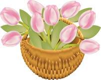 Cesta del tulipán Fotografía de archivo libre de regalías