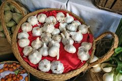Cesta do alho branco em Múrcia imagens de stock royalty free
