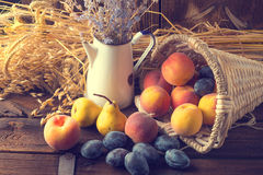 Cesta do fruto Fotografia de Stock