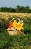 Cesta do piquenique com grupo de flores Fotos de Stock Royalty Free