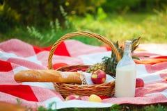 Cesta do piquenique, fruto, leite, maçãs, verão do pineappe, resto, manta, ascendente próximo da grama fotografia de stock royalty free