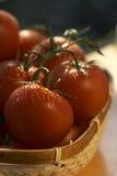 Cesta do tomate Imagem de Stock Royalty Free