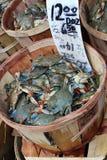 Cesta dos caranguejos fotografia de stock royalty free