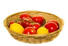 Cesta dos tomates do jardim Fotografia de Stock