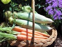 Cesta dos vegetais Fotografia de Stock Royalty Free