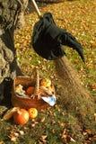 Cesta e chapéu da abóbora de Halloween Fotografia de Stock