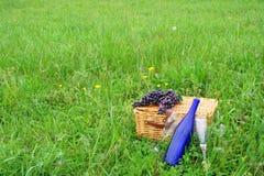 Cesta e vinho do NIC do PIC Imagens de Stock Royalty Free