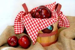 Cesta hermosa de manzanas Imágenes de archivo libres de regalías