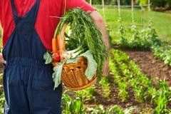 Cesta levando do fazendeiro com vegetais Imagens de Stock