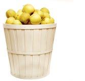 Cesta por completo de manzanas Fotos de archivo libres de regalías