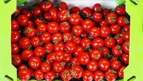 Cesta por completo de tomates rojos imagen de archivo libre de regalías