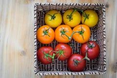 Cesta quadrada de tomates do colorfull imagens de stock