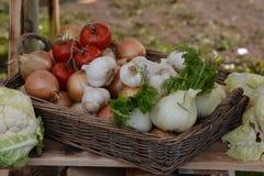 Cesta rural de la comida Imágenes de archivo libres de regalías