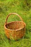 Cesta tejida en la hierba Imagenes de archivo