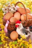 Cesta trenzada rural con los huevos para pascua Fotos de archivo