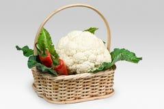 Cesta vegetal Imagen de archivo libre de regalías