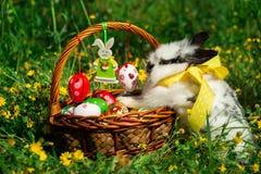 Cesta y conejito de Pascua Foto de archivo