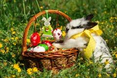 Cesta y conejito de Pascua en el prado Foto de archivo