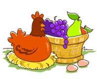 Cesta y gallina de fruta Imagen de archivo libre de regalías