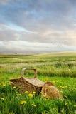 Cesta y sombrero de la comida campestre en la hierba alta Imagenes de archivo