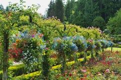 Cestas colgantes en los jardines Imágenes de archivo libres de regalías