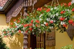 Cestas coloridas de la flor que cuelgan en un pórtico Fotografía de archivo