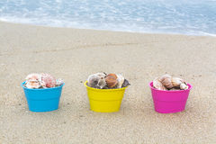 Cestas da Páscoa com conchas do mar Imagem de Stock Royalty Free