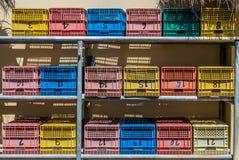 Cestas de fruta imagen de archivo libre de regalías