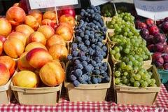 Cestas de fruta en la tabla con un mantel a cuadros rojo Fotos de archivo libres de regalías