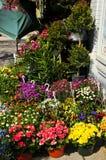 Cestas de la flor para la venta Fotografía de archivo libre de regalías