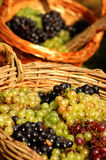 Cestas de la uva Foto de archivo libre de regalías
