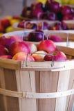 Cestas de manzanas de Michigan Imágenes de archivo libres de regalías
