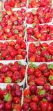 Cestas de morangos frescas em um mercado Fotografia de Stock