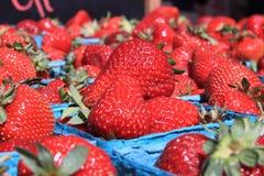 Cestas de morangos maduras Foto de Stock Royalty Free