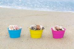 Cestas de Pascua con las conchas marinas Imagen de archivo libre de regalías
