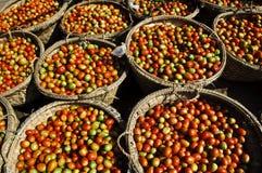 Cestas de tomates de cereja Foto de Stock