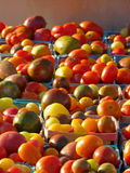 Cestas de tomates de la herencia en el mercado de los granjeros imagenes de archivo