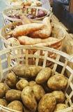 Cestas de verduras orgánicas Foto de archivo
